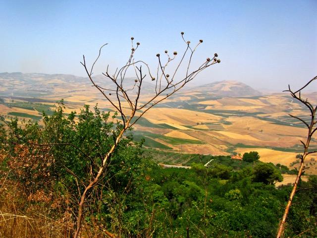 The hills near Alcamo